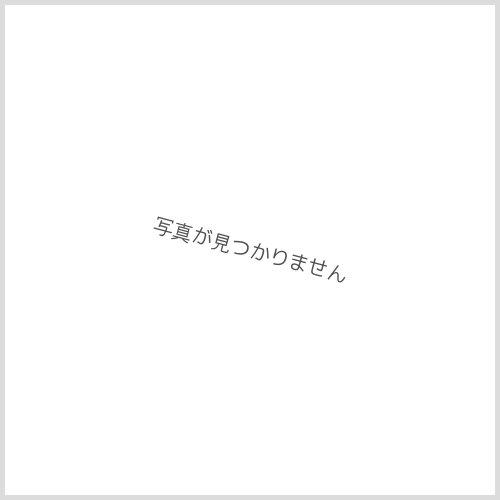 他の写真2: 【取り寄せ商品】Argent Gleam(アージェントグリーム) ビーズスカルリング
